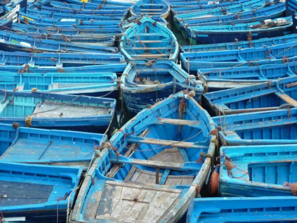 blue fishing boats in Essaouira